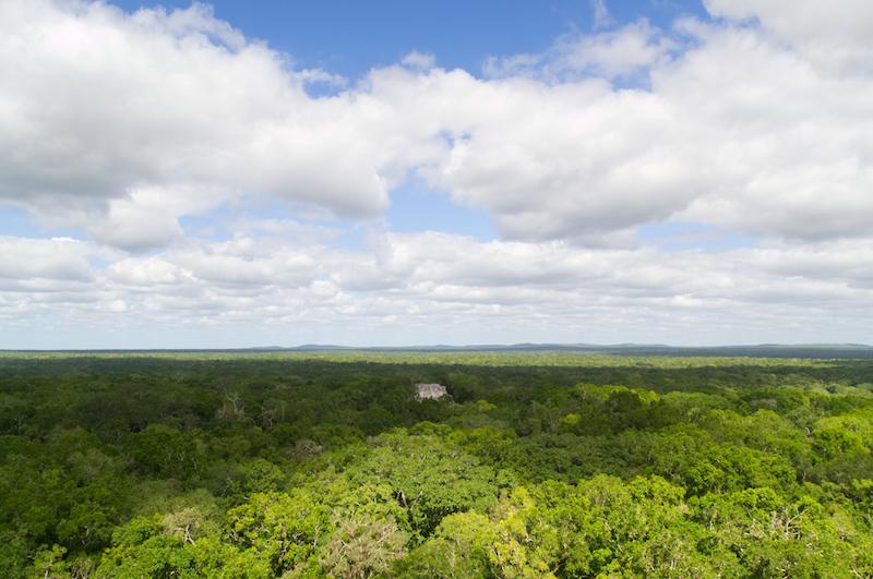 Der endlose Dschungel von Calakmul