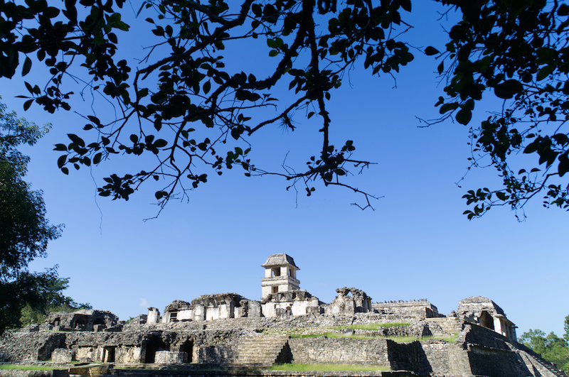 Die Ruinen des Palastes von Palenque