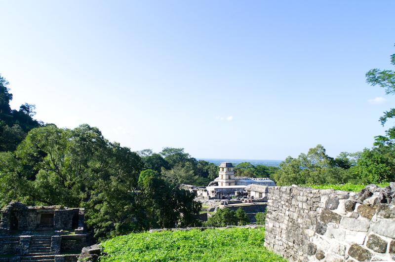 Blick hinüber zum Palast von Palenque