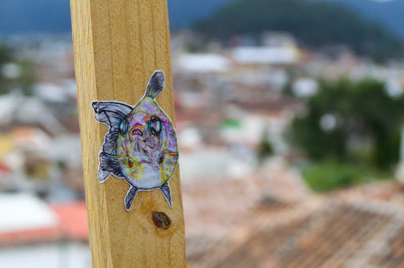 Fisch-Streetart in Mexiko