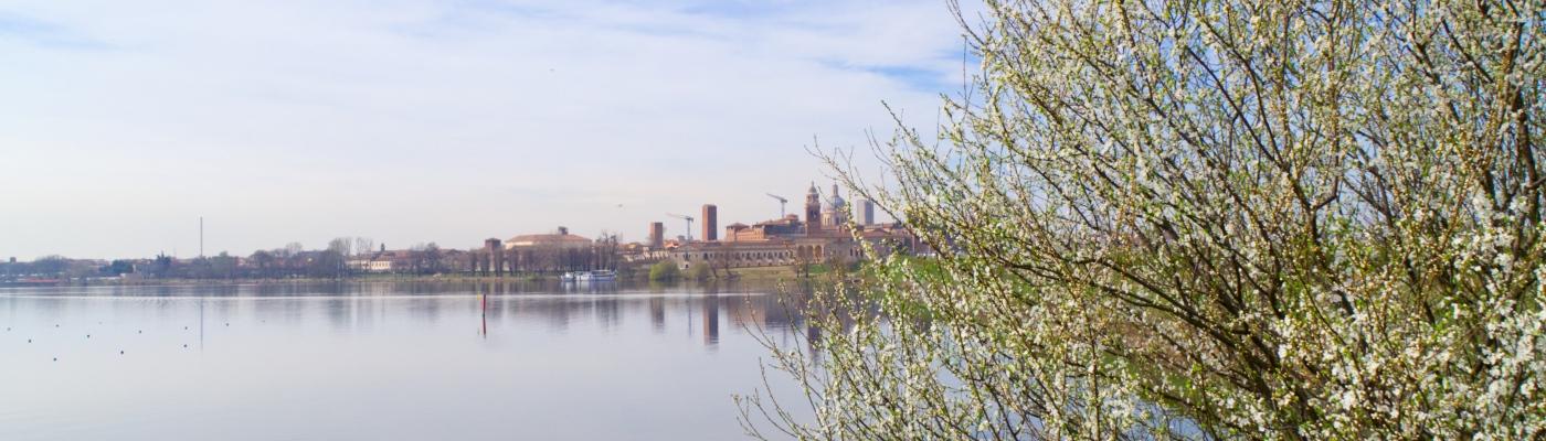Blick über See auf Mantua