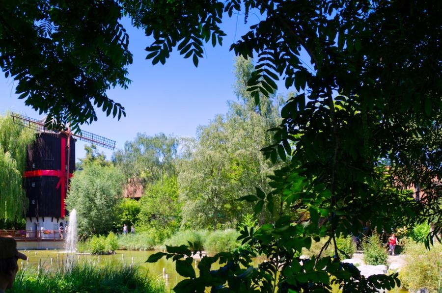 Der Weiher und die Altweibermühle