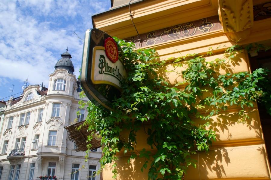 Efeu wächst an der Fassade dieser Prager Kneipe